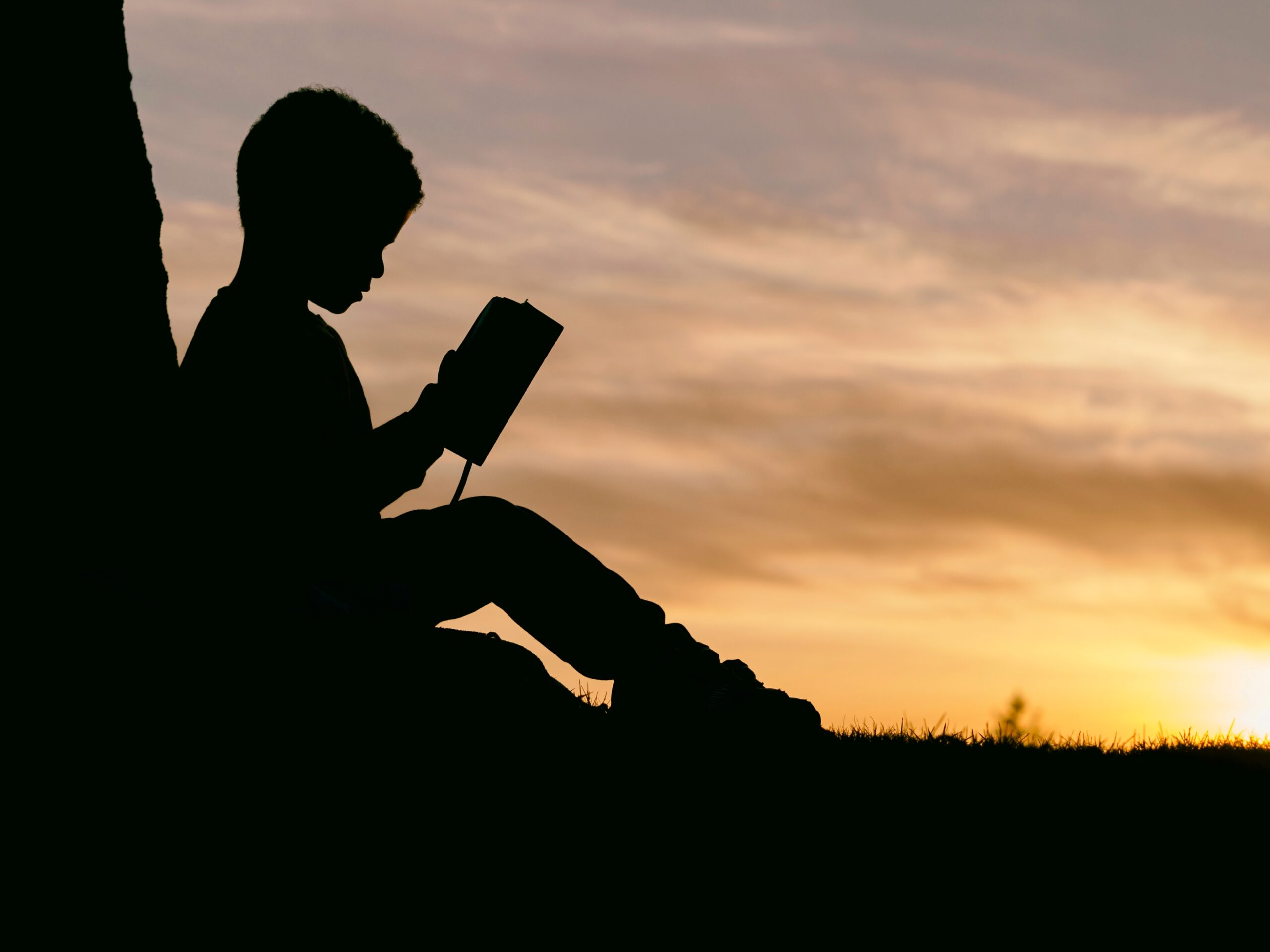 silhouette of child sitting reading book behind tree during sunset